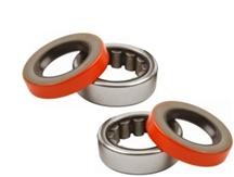 F-150 SVT Lightning Axle Bearing And Seal Kit (93-04)