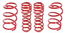 Mustang BMR Lowering Spring Kit (07-14) Drag Race
