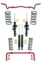 Mustang Eibach Pro-System Plus Suspension Kit (05-10)