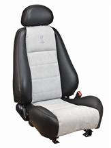 Mustang Cobra Coupe Leather Seat Upholstery  with Medium Graphite Suede Inserts (03-04)
