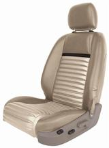 Mustang Mach 1 Upholstery Tan/Black Stripe Vinyl (05-07) Coupe