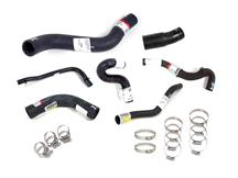 Mustang Radiator Hose Kit (96-98)