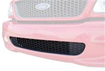 F-150 SVT Lightning Front Lower Grille (99-00)