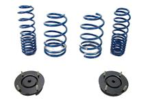 Mustang Ford Racing Lowering Spring & Strut Mount Ki (05-14)