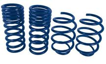 "Mustang Ford Racing 1"" Track Lowering Springs (2015)"