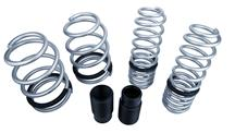 Mustang SVE Progressive Rate Lowering Springs Silver (05-14)