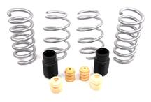 Mustang SVE Progressive Rate Lowering Springs (2015)